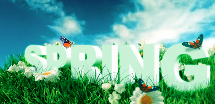 Básicos de primavera 1