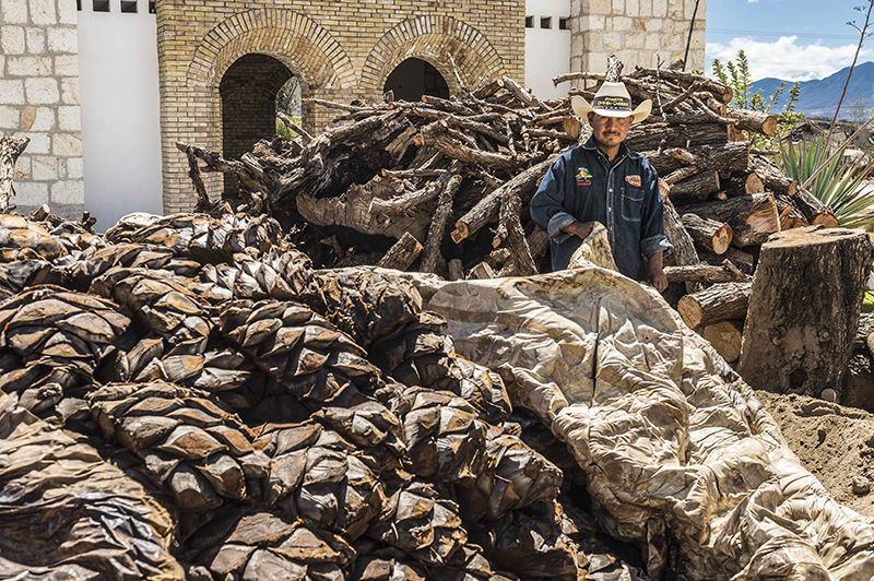 El mezcal de Oaxaca aclamado en el mundo 6